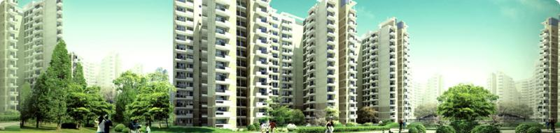 CHD Golf Avenue 106 Gurgaon Contact:9818833409/9560505862