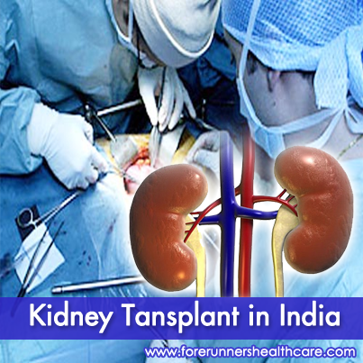 India offers budget-friendly cost for Kidney Transplant